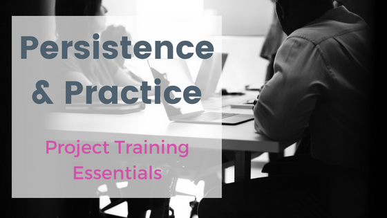 Persistence and Practice; Project training essentials
